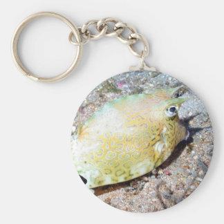 Scrawled Cowfish Keychain