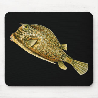 Scrawled cowfish mouse pad