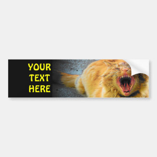Screaming Cat Plus your text Bumper Sticker