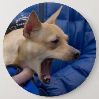 Screaming Chihuahua Button