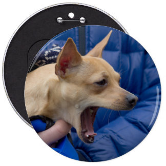 Screaming Chihuahua Button