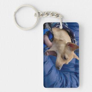Screaming Chihuahua Keychain