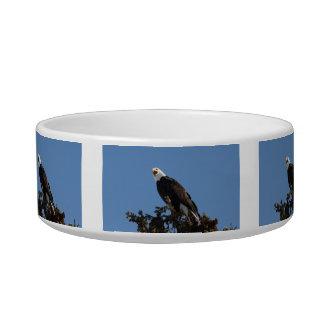 Screaming Eagle Bowl