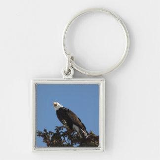 Screaming Eagle Keychain