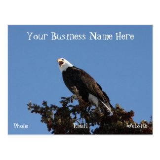Screaming Eagle; Promotional Postcard