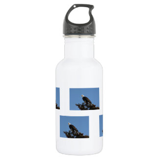 Screaming Eagle Stainless Steel Water Bottle