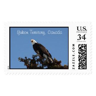 Screaming Eagle; Yukon Territory Souvenir Postage Stamps