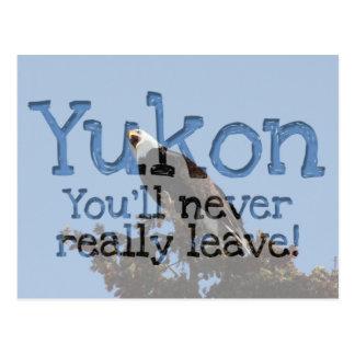 Screaming Eagle; Yukon Territory Souvenir Postcard
