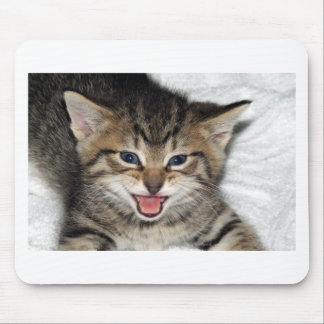 Screaming Kitty Mouse Pad