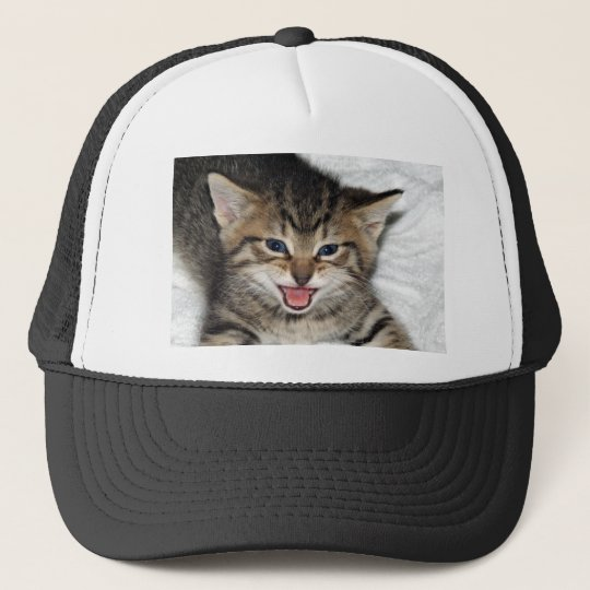 Screaming Kitty Trucker Hat