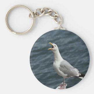 screaming seagull singing love songs keychain