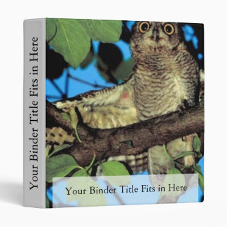 Screech owl 3 ring binder