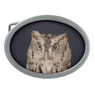 Screech Owl Belt Buckle