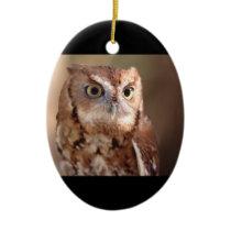 screech owl ceramic ornament