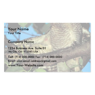 Screech owl Double-Sided standard business cards (Pack of 100)
