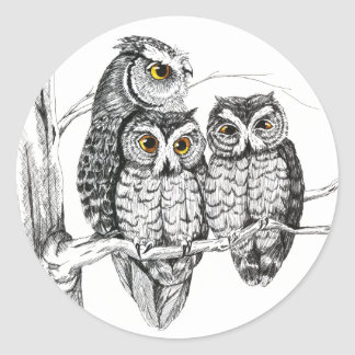 Screech Owl Family Sticker