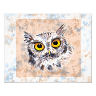 screech owl, grey phase photo print