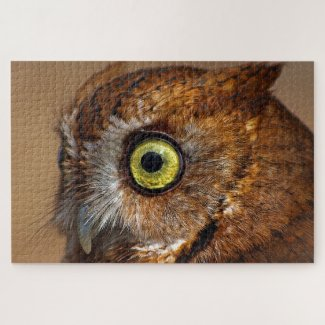 Screech Owl in Pieces Jigsaw Puzzle
