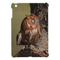 Screech Owl iPad Mini case