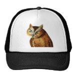 Screech Owl Mesh Hats