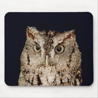 Screech Owl Mouse Pad