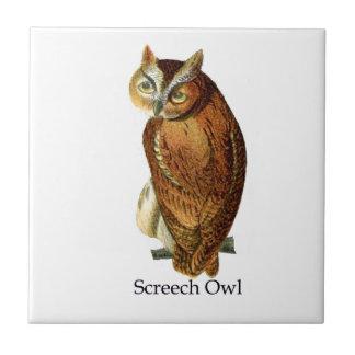 Screech Owl Ceramic Tile