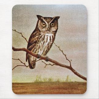 Screech Owl Vintage Illustration Mouse Pad