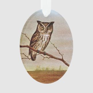 Screech Owl Vintage Illustration Ornament