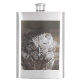 Screech Owl with One Eye Open Flask