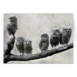 Screech Owls Card