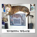 Screen Savor Posters