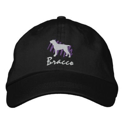 Scribbled Bracco Embroidered Baseball Caps