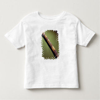 Scribe's case for writing reeds tee shirt