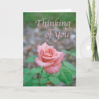 Scripture card --