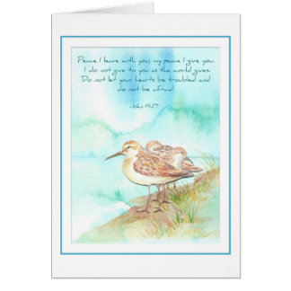 Scripture, Inspiration, John 14:27, Beach Bird Card