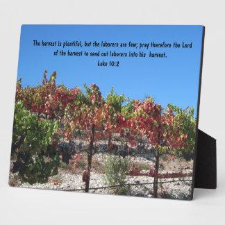 Scripture plaque: Vineyard, Luke 10:2 Plaque
