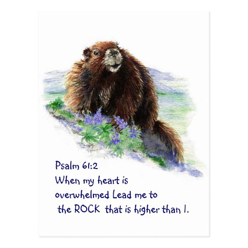 Scripture Psalm 61:2 Encouraging Watercolor Animal Post Card