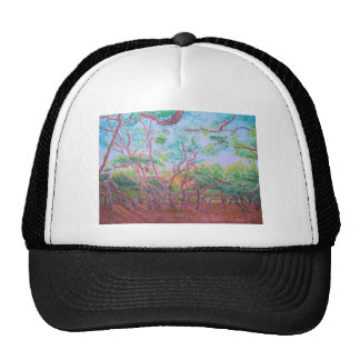 Scrub Oaks Hats