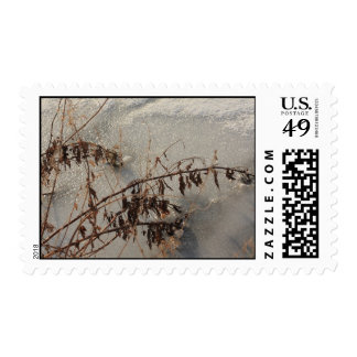 scrub on the ice postage stamps