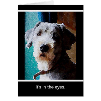 Scruff It's In the Eyes Greeting Card
