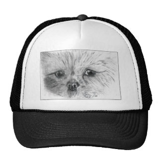 Scruffy Trucker Hat