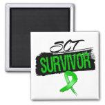 SCT Stem Cell Transplant Survivor Fridge Magnets
