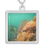 scuba diver & Scorpionfish Scorpanopsis Silver Plated Necklace