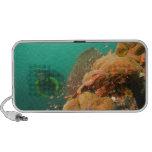 scuba diver & Scorpionfish Scorpanopsis iPhone Speakers