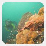 scuba diver & Scorpionfish Scorpanopsis Square Sticker