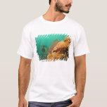 scuba diver & Scorpionfish Scorpanopsis T-Shirt
