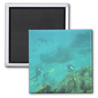 Scuba Divers Dream Magnet