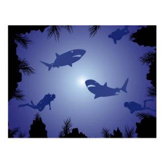 Scuba Divers & Sharks Pattern Postcard