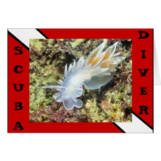 Scuba Divier Nudibranch Card