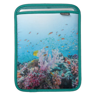 Scuba Diving With Colorful Reef And Coral Sleeve For iPads
